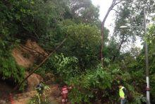 Hujan lebat sebabkan tanah runtuh di Pulau Pinang