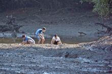 Tiga lelaki dilihat ambil kerang, ketam di Paya Simpanan Sungei Buloh