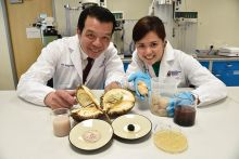 Saintis NTU ubah biji durian sebagai penstabil makanan